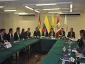 VII Reunión del Comité de Dirección del proyecto INPANDES.
