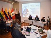 Inauguración del Taller de trabajo técnico para la elaboración del Plan de Implementación de la Estrategia Andina para la Gestión del Riesgo de Desastres 2017-2030.