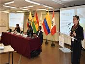 Introducción al tema de ingredientes, tema expuesto por Maritza Reátegui de la Universidad Peruana Cayetano Heredia.