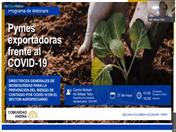 Webinar 1- Directrices Generales de Bioseguridad para la prevención del riesgo de contagio por COVID-19 en el medio rural.